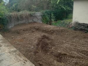 Ems paysage paysagiste caluire et cuire for Amenagement jardin yonne